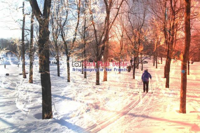 Winter-Scene-Photo-Montage