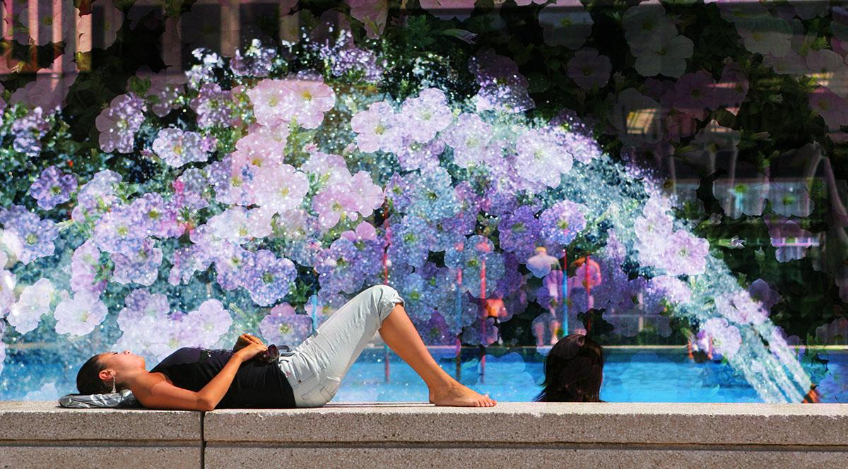 Jet de fleurs - photo stock
