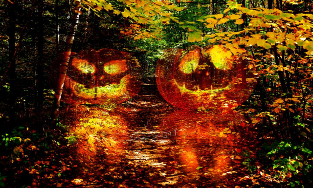 Halloween Montage Photo 1 - photo stock