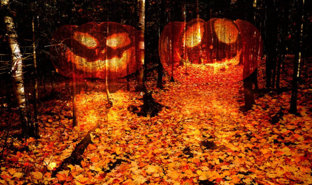 Halloween Montage Photo 2 - photo stock