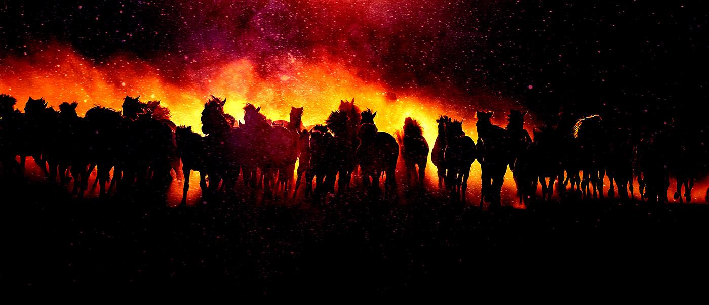 Horde de chevaux en feu - photo stock