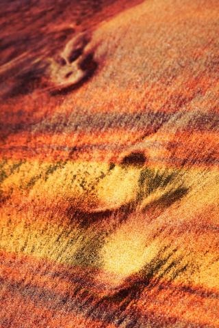 Traces de pas dans le sable - photo stock