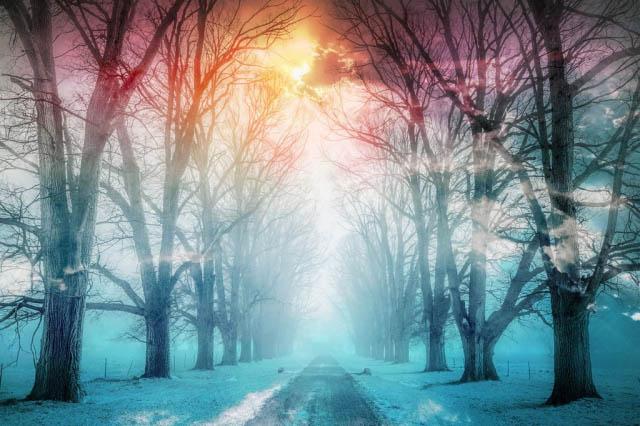 Chemin en hiver 02 - photo stock