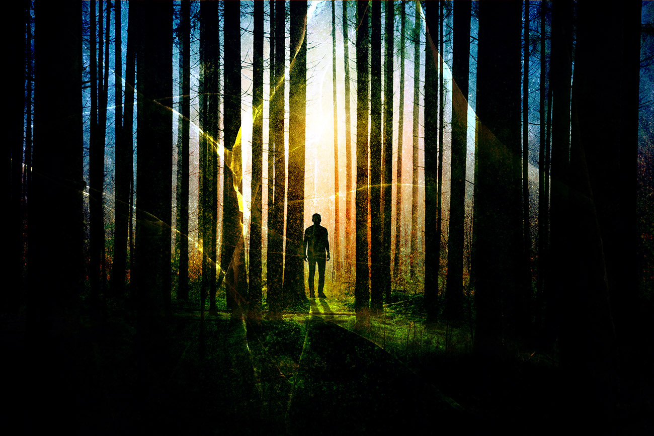 Foret mysterieuse 01 - photo stock